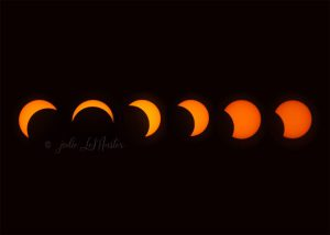 Solar Eclipse Composite by Jodie LeMaster