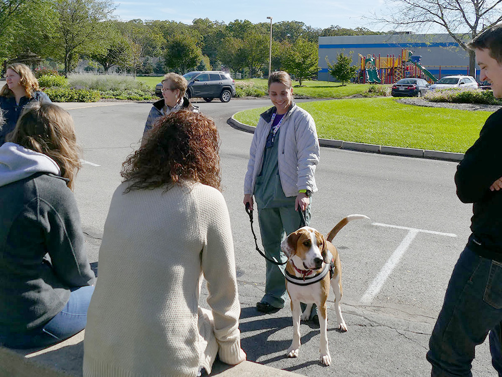This photo shows a One Dog at a Time Employee pictured with one of the dogs in training