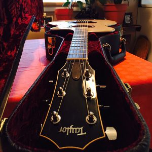 The guitar of Dave Andrus