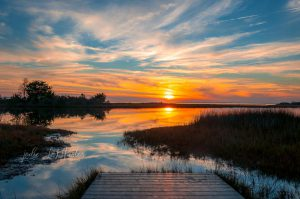 Tranquility by Jodie LeMaster